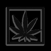 Framed Cannabis plant metal wall art